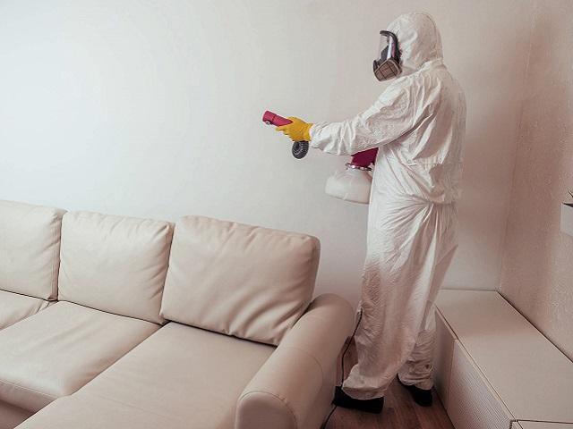 Sanificazione e Disinfezione di ambienti11